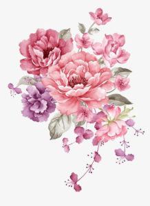 flower transparent png